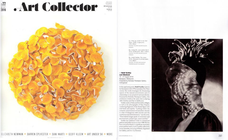 Art_Collector_withcover_72dpi